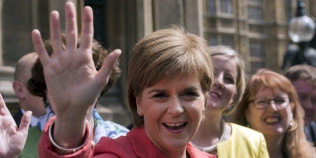 S'ha presentat a les eleccions Nicola