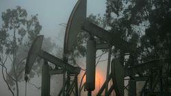 Desinversión fósil: ¿un camino para luchar contra el cambio
