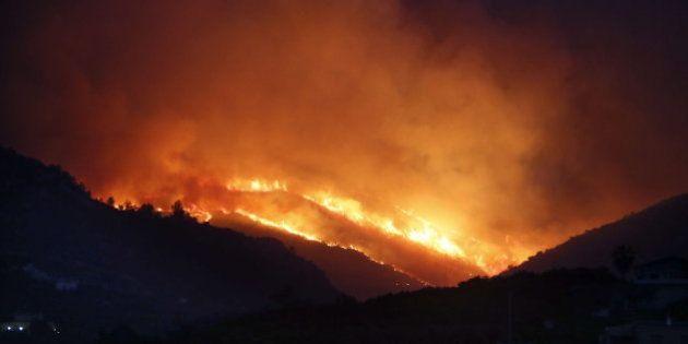 Alicante sufre el primer gran incendio forestal del