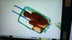 El Gobierno apoya que 'el niño de la maleta' se reúna con su
