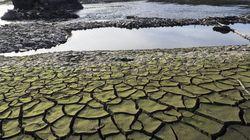 Este año hidrológico ha sido el más seco desde hace un
