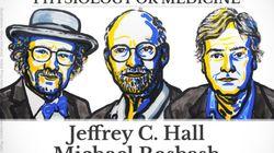 Los investigadores de los ritmos circadianos, Premios Nobel de Medicina