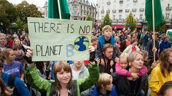La apuesta verde de Pascal (un tratado de paz con los