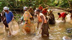 En defensa del trabajo de WWF en la Cuenca del Congo: por las personas y la