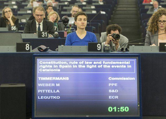 La líder de los Verdes en la Eurocámara, Ska