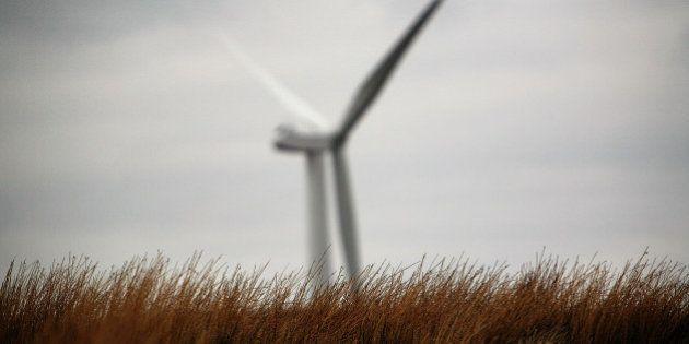 Carrera medioambiental: ¿la próxima carrera