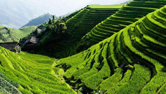 Ocho impactantes paisajes que te harán ver el mundo con otros