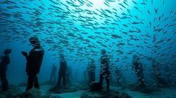 ¿Un museo bajo el mar? Ya puedes visitarlo en