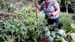 Las señoras gallegas de la marihuana que se han hecho virales gracias a este divertido