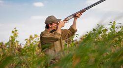 Los cazadores piden la cabeza de la directora de la SEO Bird