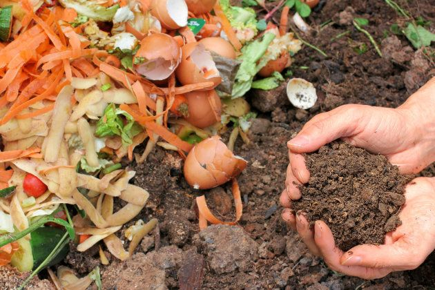 Hands are holding composted