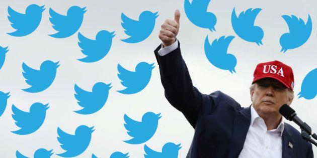 Donald Trump y Twitter: la historia del pájaro