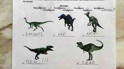 Dinosaurios y
