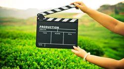¡Acción! El cine y la televisión deberían contratar directores expertos en