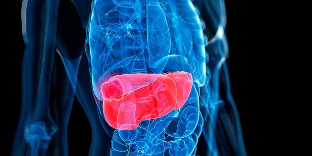 Investigadores del CNIO descubren un vínculo entre el colesterol, la inflamación y el cáncer de