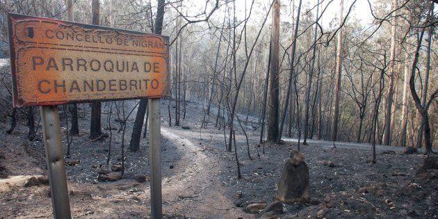 Zonas siniestradas de los montes gallegos, en la aldea de Chandebrito en Nigrín (Pontevedra), donde fallecieron...