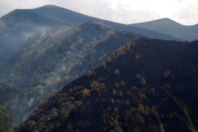 Montes arrasados por el fuego en la zona de los Ancares (Lugo) Reserva Natural de Galicia. EFE / ELISEO