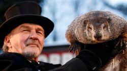 La marmota Phil predice un largo