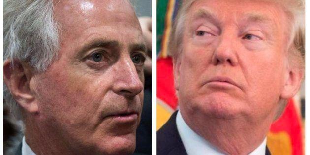 Un senador republicano clave para Trump le llama