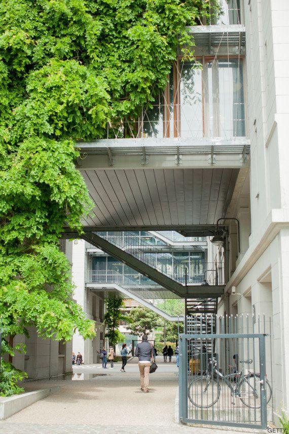 París: modelo de ciudad verde a