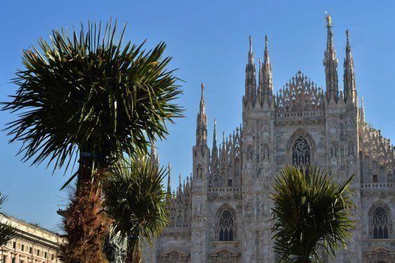 Starbucks la lía al plantar árboles tropicales en la plaza del Duomo de