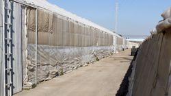 Un rumano de 30 años asesina a su expareja en una acequia de Almería y luego se