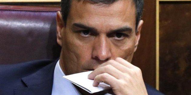 El durísimo tuit de Martu Garrote que indigna a Pedro