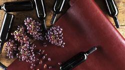 Tejidos de estiércol y piel procedente del vino, así vestiremos en el