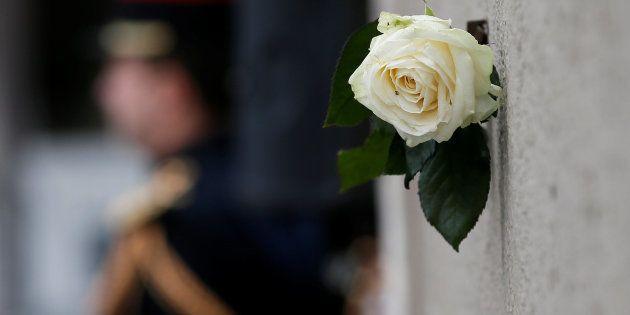 Una rosa blanca, junto a la placa conmemorativa de los atentados de París de hace dos años colocada ante...