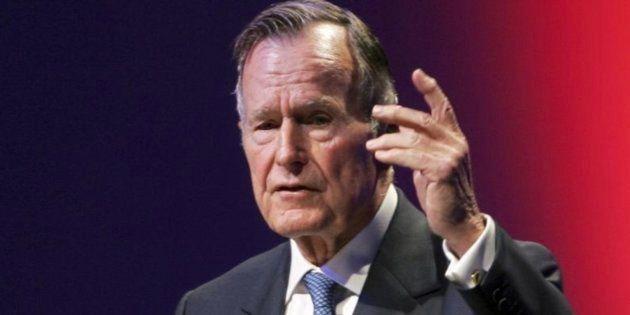Imagen de archivo de Bush