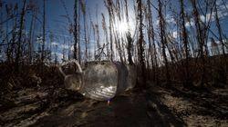 La falta de lluvia seca nuestras carteras: así hace la sequía que suban los