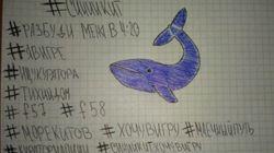 El creador de la 'ballena azul' explica el objetivo de este reto que acaba en suicidio: