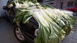 15 formas de poner las cosas a secar en China