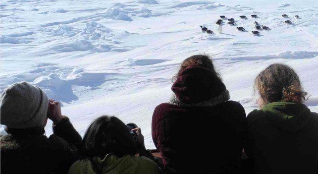 Esta expedición mundial antártica sobre el cambio climático sólo acepta mujeres y vas a entender por