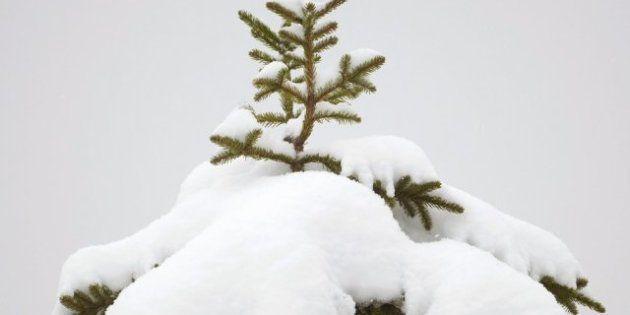 Invierno de 2012: llega a las 12.12 del viernes y será el más corto desde hace siglos