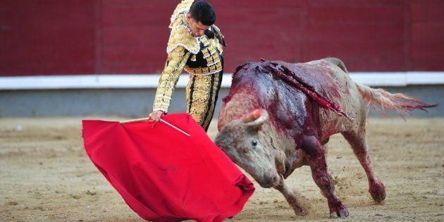 Los programas sobre toros en RTVE costaron 1 millón de euros en