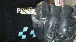La Policía captura a una serpiente en el aula de un colegio de Fuenlabrada