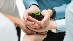 Negocios inclusivos: una oportunidad para las empresas y comunidades