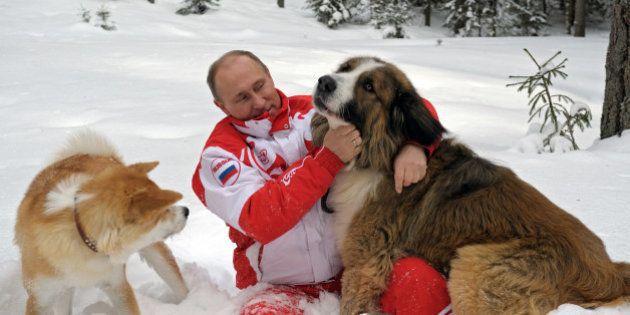 Putin tiene el respaldo del 71,6% de los rusos, según una