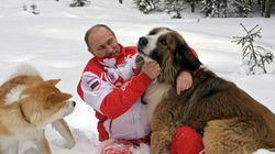 Y mientras a Putin le sienta bien Ucrania en las