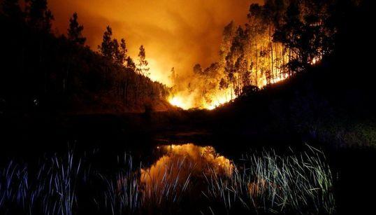 Arde Portugal: las fotos de la destrucción y la batalla contra el