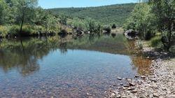 Las Reservas Naturales Fluviales, una figura eficaz de conservación para nuestros
