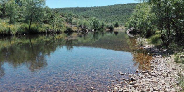 Imagen del río Estena, una Reserva Fluvial Natural del centro