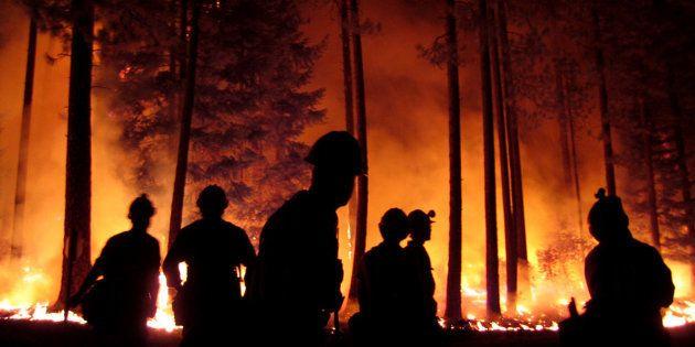 Escupitajos contra el fuego: precariedad y falta de previsión ponen en peligro la masa forestal
