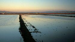 Estos 5 paisajes de España son ahora reserva de la biosfera