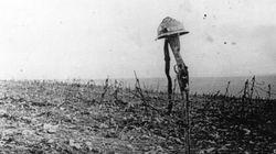 Hace 99 veranos comenzaba la Primera Guerra Mundial