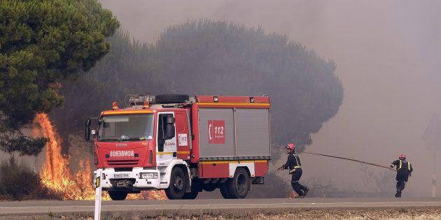 Un grupo de bomberos intenta apagar un foco de fuego en la carretera entre Mazagón y Matalascañas, el...