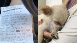 La nota de una mujer junto a un cachorro abandonado emociona al