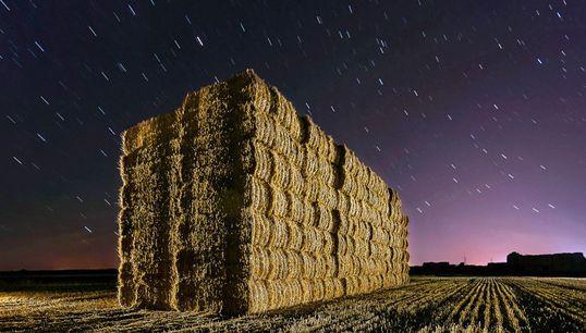 Las mejores fotografías del mundo rural en