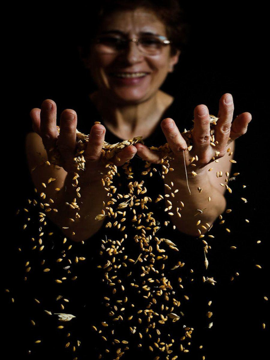 2º premio: Jonathan Tajes Olfos. Oro - Piñel de Abajo
